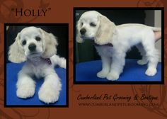 How cute is Holly??? Too cute for words!!