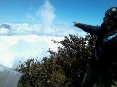 Ocean on the cloud, Merbabu Mount 3142 meters on sea level