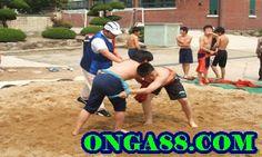 체험머니♥☺✪♦ONGA88.COM♥☺✪♦카지노먹튀: 무료다시보기✪☆✪♧✪ONGA88.COM✪☆✪♧✪무료다시보기 Sumo, Wrestling, Sports, Lucha Libre, Hs Sports, Sport