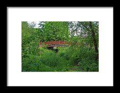 toledo, ohio, botanical, garden, bridge, nature