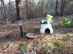 green mushroom toad house kit
