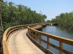 Love nature? Bradenton, Florida's Robinson Preserve has miles of trail you can bike, jog or stroll.  Have a furry friend? Bring them along, they will enjoy it just as much as you do :) ONE OF MY FAVS