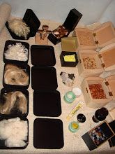 CGS Level 2 History of the Gifts. Photo: Angora, two grades of hemp, flax, bamboo fiber, wool, cross, cotton boll, barley, sulfur, wild rice, quartz, pinto beans, mint extract, lanolin, solid parfume -plumeria, ginseng (boy is it awful) tumbled rocks