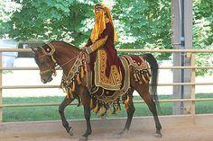 Arabian Horse Costume, Horse Costumes, Arabian Costumes, Arabian Horses, Halloween Costumes, Pretty Horses, Beautiful Horses, Horse Anatomy, Horse Ears