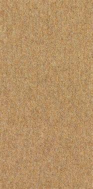 "Natural ""Solid"" carpet border"