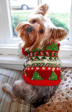 CHRISTMAS TREES Original Beaded Fair Isle Dog by mysavannahcottage