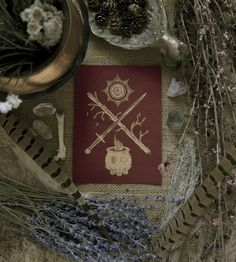 "poisonappleprintshop: "" The Tarot Suits by Adrienne Rozzi // POISON APPLE PRINTSHOP Photo by Chris Goodman """