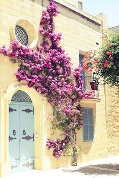 Mdina, Malta    Photography by Sonia Crouse