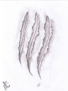 Would make a cool tattoo. Not for me but for someone.... Tiger claw scratch.
