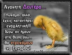 Funny Greek Quotes, Cute Quotes, Funny Quotes, Wallpaper Quotes, Good Morning, Life Is Good, Haha, Relax, Jokes