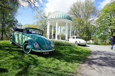 Cute Cars, Bay Window, Norway, Convertible, Antique Cars, Classic Cars, Pastel, Beetle, Green