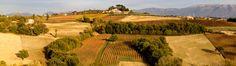 #Montefalco: in #Umbria alla scoperta del #Sagrantino | Viaggio nel Mondo