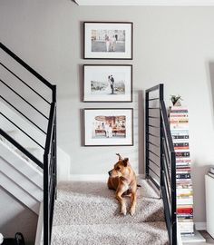 Best Ideas For Your Wedding Photo Album - Poptop Event Planning Guide Wedding Photo Albums, Wedding Album, Wedding Photos, Event Planning Guide, Digital Photo Album, Artwork For Living Room, Photo Wall Decor, Picture Frames Online, Inspiration Wall
