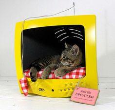 Caminha tubo de TV para gatos e cães pequenos