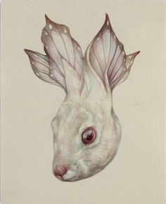 Surrealistic Animal By Marco Mazzoni