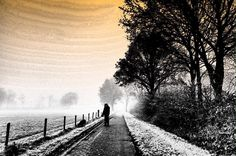 Walking the dog in the morning #planoly #voorthuizen #great_capture  #edit  #edit4all  #edit4fun  #editz4fun  #world_great  #like4like  #zoomnl  #likeback #manipulation  #digitalmanipulation #edit_of_our_world  #edit_mania__  #edit_masters  #photooftheday  #fotovandedag  #fotograaf  #photographer  #photopainting  #photographyart  #painterly  #behance  #fineart  #art  #artistic #foggy  #december #500px