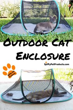 You Won't Believe How Cool These Portable Outdoor Cat Enclosures Are! #catsdiyenclosure