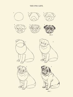 How to Draw The Pug Life Art Print by Huebucket | Society6 on We Heart It - http://weheartit.com/entry/109265168