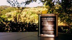 Olio Extra Vergine d'Oliva - Agriturismo Tananei Valdinievole Toscana