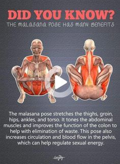 Fitness Workouts, Yoga Fitness, Fitness Hacks, Fitness Motivation, Physical Fitness, Mens Fitness, Health Benefits, Health Tips, Health And Wellness