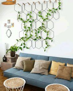 O uso de trepadeiras para decorações espetaculares