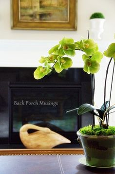 Romancing the Vignette - Back Porch Musings