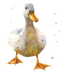 feathers nursery art - Google Search