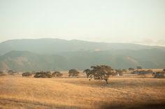 Central California <3