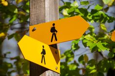 yellow road signage at daytime Hiking Directional Signs Which Is Correct, Love Articles, The Road Not Taken, Autonomic Nervous System, Out Of Body, Directional Signs, Focus Photography, Verse Of The Day, Bee Keeping