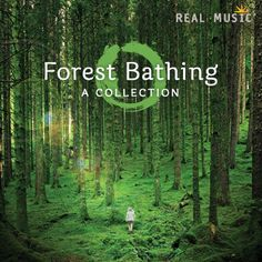Forest Bathing CD: A Collection By Real Music Artists ~ Forest bathing is an ancient Japanese tradition known as the medicine of relaxing in a forest. Forbes Quotes, Voltaire Quotes, New Age Music, Music Search, Forest Bathing, Template Site, Perfection Quotes, Cool Things To Buy, Stuff To Buy