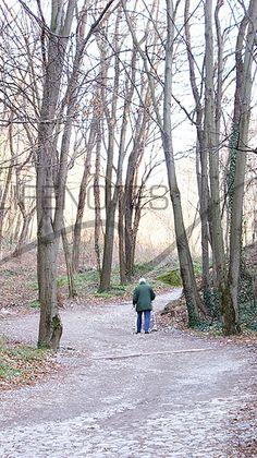 Sentiero Spina Verde