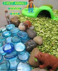Forest animals sensory bin for kids!  A fun small world activity for preschoolers and toddlers.