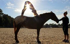 I need to go here. Horse yoga and a trail ride followed by an equestrian massage sounds dreamy. Who's going with me? I might need to save up a bit to afford it, but it looks totally worth it. http://www.salamanderresort.com/equestrian/