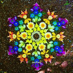 Healing the Spirit with Flower Mandalas – Fractal Enlightenment fractalenlight. Healing the Spirit Art Floral, Land Art, Mandala Art, Art Fractal, Art Environnemental, Art Et Nature, Flower Rangoli, Pressed Flower Art, Environmental Art