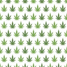 Mary Jane Removable Wallpaper Decal