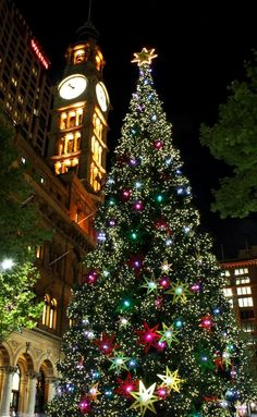 Christmas in Sydney, Australia   by Eνє'ℓуηє