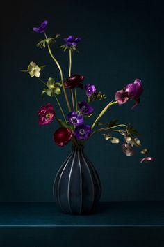 """Bloem in Blauw"" by CHINNOE | VLEMMIX www.chinnoe-vlemmix.com Arrangements Ikebana, Floral Arrangements, Flower Room, Flower Art, Flower Painting Canvas, Acrylic Flowers, Amazing Flowers, Flower Vases, Pretty Flowers"