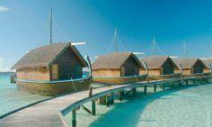 Convivencia acuática. Descubra proyectos arquitectónicos integrados al agua: http://www.larevista.ec/actualidad/vivienda-y-decoracion/convivencia-acuatica #Vivienda #Arquitectura #Decoracion #Mar #Agua