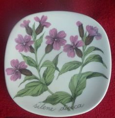SILENE DIOICA RED CAMPION ESTERI TOMULA Kitchenware, Tableware, Finland, Vases, Stuff To Do, Retro Vintage, Pottery, Ceramics, Painting