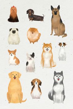 how do html color codes work Art And Illustration, Cute Animal Illustration, Watercolor Illustration, Watercolor Art, Simple Watercolor, Watercolor Background, Watercolor Landscape, Watercolor Flowers, Animal Illustrations