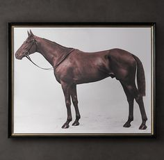 Restoration Hardware: 1928 Royal Ascot Thoroughbred Print $1695  Our portrait of a champion was taken in 1928 at England's Royal Ascot, the world's most prestigious horserace. Reprinted and carefully aged, the image depicts Aditoc, a magnificent thoroughbred owned by Lord Denver.  Reproduces a photo of Lord Denver's champion horse, Aditoc, after a 1928 victory at England's Royal AscotCaptures the majestic beauty of the thoroughbred horseGiclée printed on archival watercolor paper for vint
