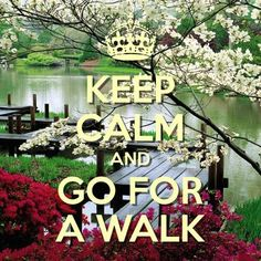 keep calm and go for a walk created with keep calm and carry on for ios keepcalm skydive walkin 2 Keep Calm Carry On, Stay Calm, Keep Calm And Love, Keep Calm Posters, Keep Calm Quotes, Power Walking, Amazing Quotes, Cute Quotes, Keep Calm Wallpaper