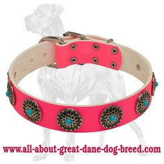 Stylish Decorated Pink #Leather #Dog #Collar for #Bulldogs $54.90   www.all-about-english-bulldog-dog-breed.com
