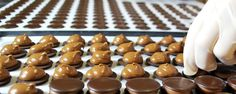 production du chocolat belge - Chocolatier Sweertvaegher