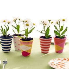 sock covered planters