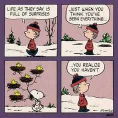 Peanuts humor