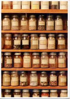 Perfect collection of preserves and dried herbs and spices