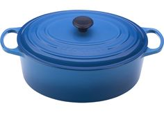 9 1/2 qt. Oval French Oven--Le Creuset! No one does it like the French. On a cold winter day, imagine a warm stew :)
