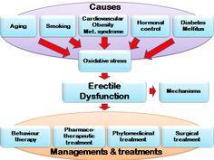 Natural cures for erectile dysfunction exercises erection problem patanjali,erection depression disfuncion erectil kegel,impuissance alcool solution cause of no erection in the morning. Trouble, Oxidative Stress, Diabetes, Behavior, The Cure, Chart, Life, Infographic, Side Effects