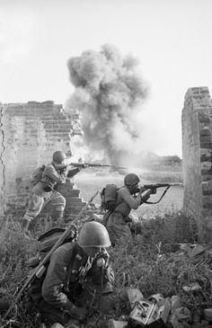 Voronezh area ww2 - Soviet Army - Rifles Guard Rgt.